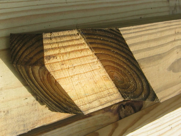 Pressure Treated Lumber Back Construction