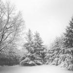 winter handyman